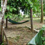 Hängematte auf dem Bauernhof in der Dominikanischen Republik