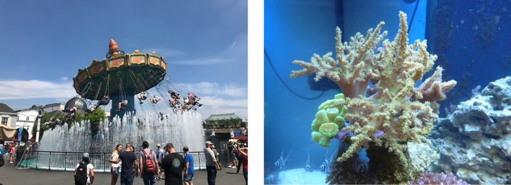 Phantasialand / Aquarium