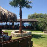 Tam Tam Beach Bar (Insel Kos)